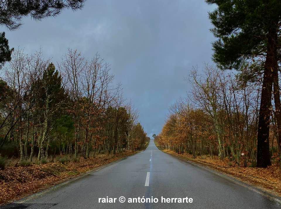 Caminhos_A-Herrarte15